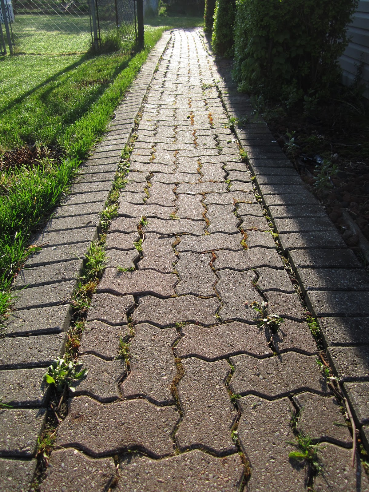 Misconceptions Of Pavers